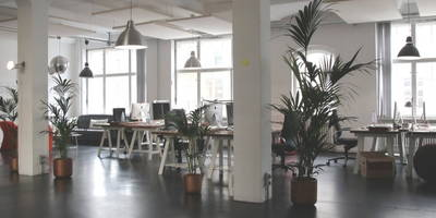 Inside an office with a strong organisational culture